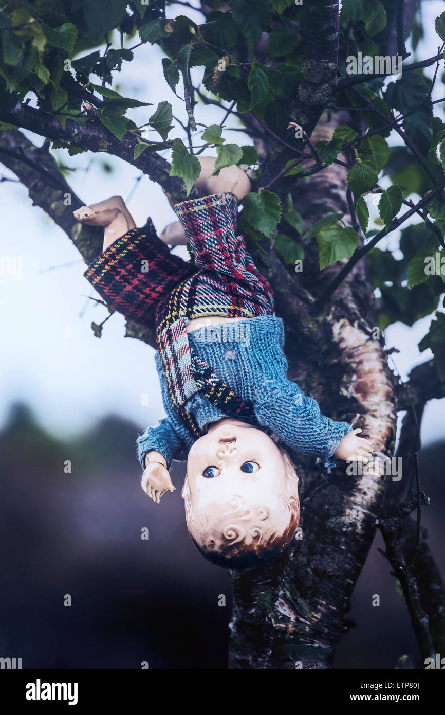 an old doll is hanging from a tree - Stock Image