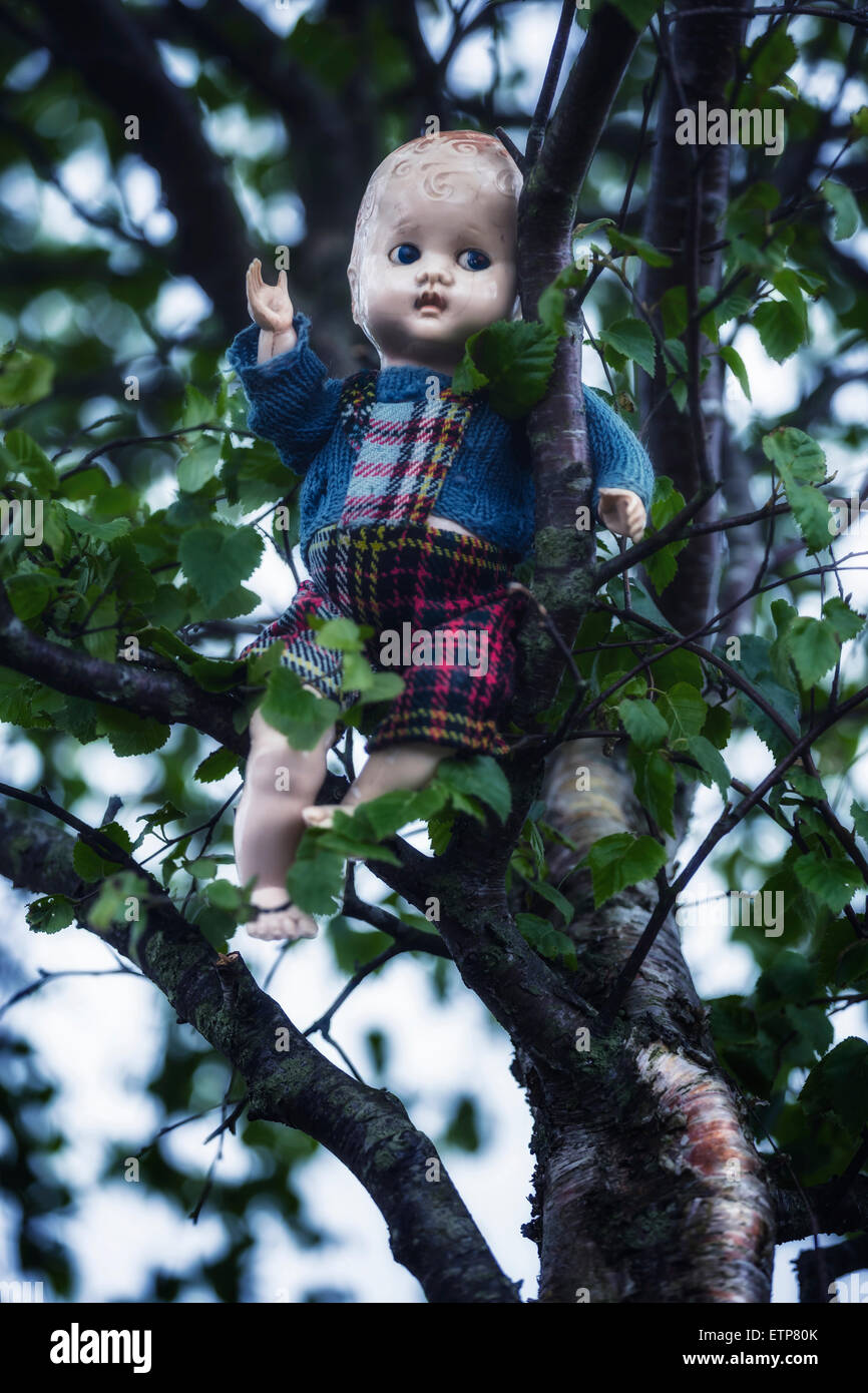 an old doll is sitting on a tree - Stock Image