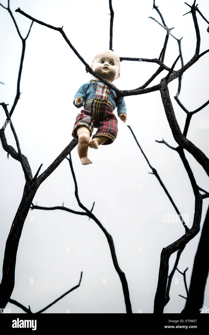 an old doll is hanging from a dead tree - Stock Image