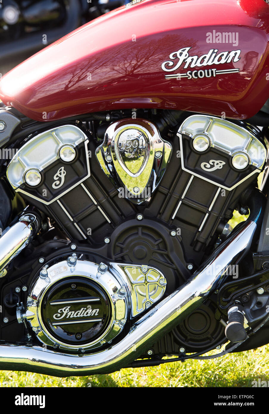 2015 Indian Scout motorcycle engine - Stock Image
