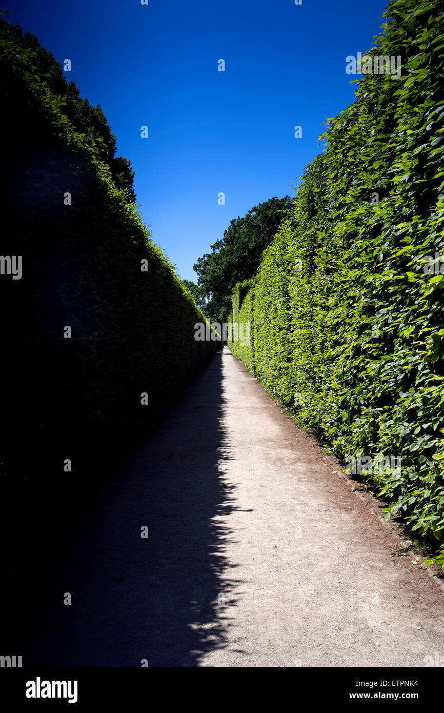 Shadows in the park create contrast symmetry - Stock Image
