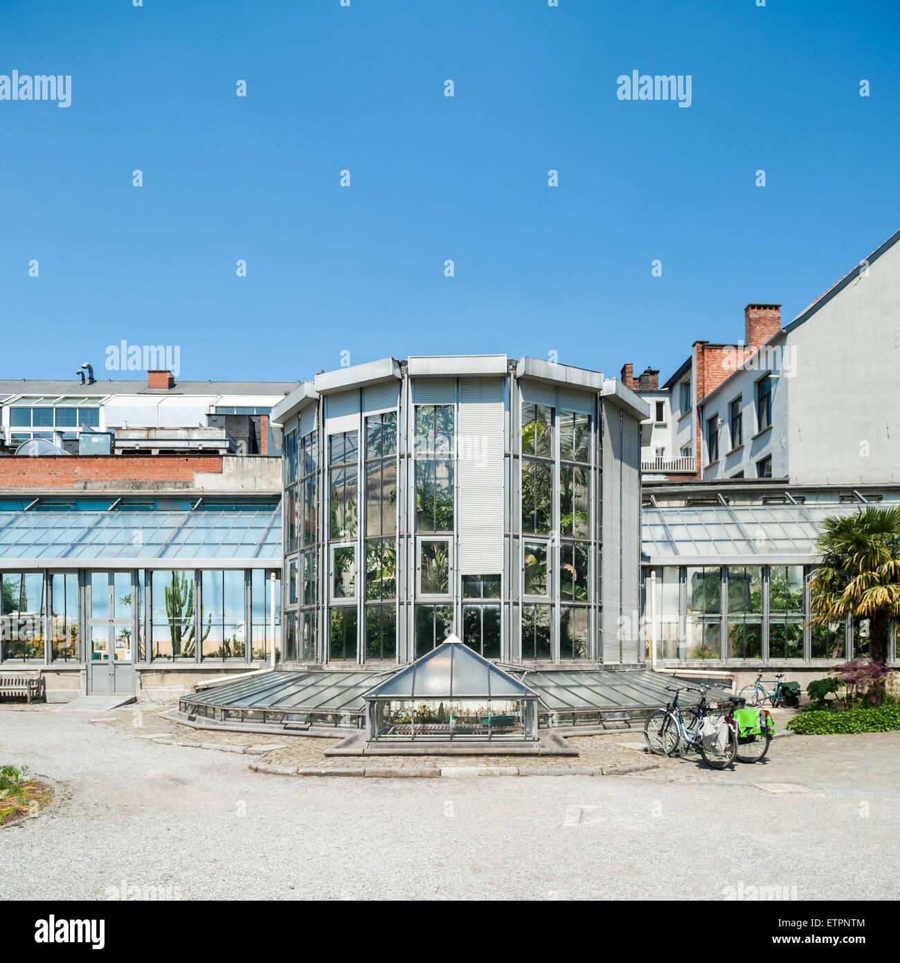 Belgium, Antwerp, greenery in the botanical garden - Stock Image