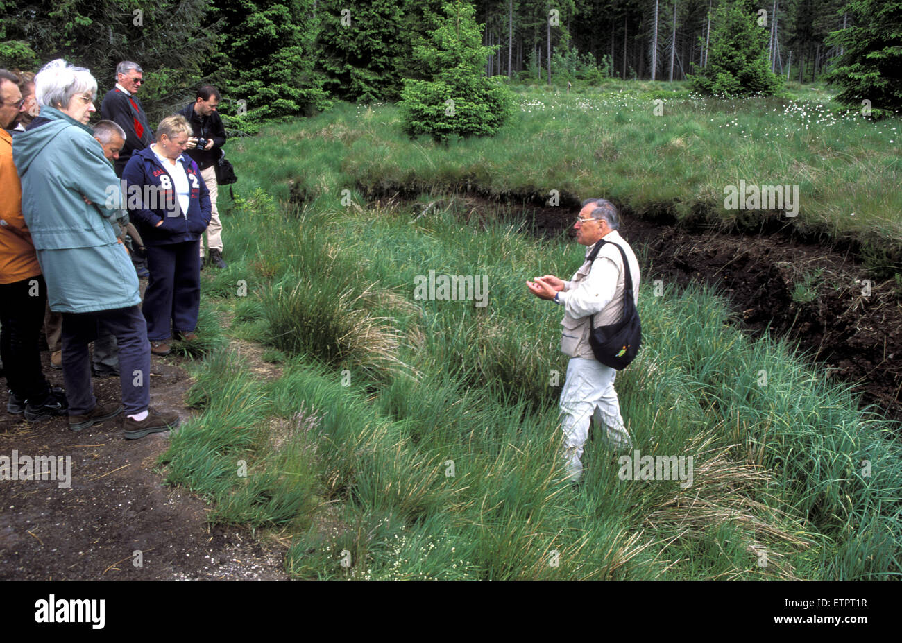 BEL, Belgium, Eastbelgium, Hautes Fagnes, Hohes Venn, walkers, nature walking tour, nature guide, former peat digging Stock Photo