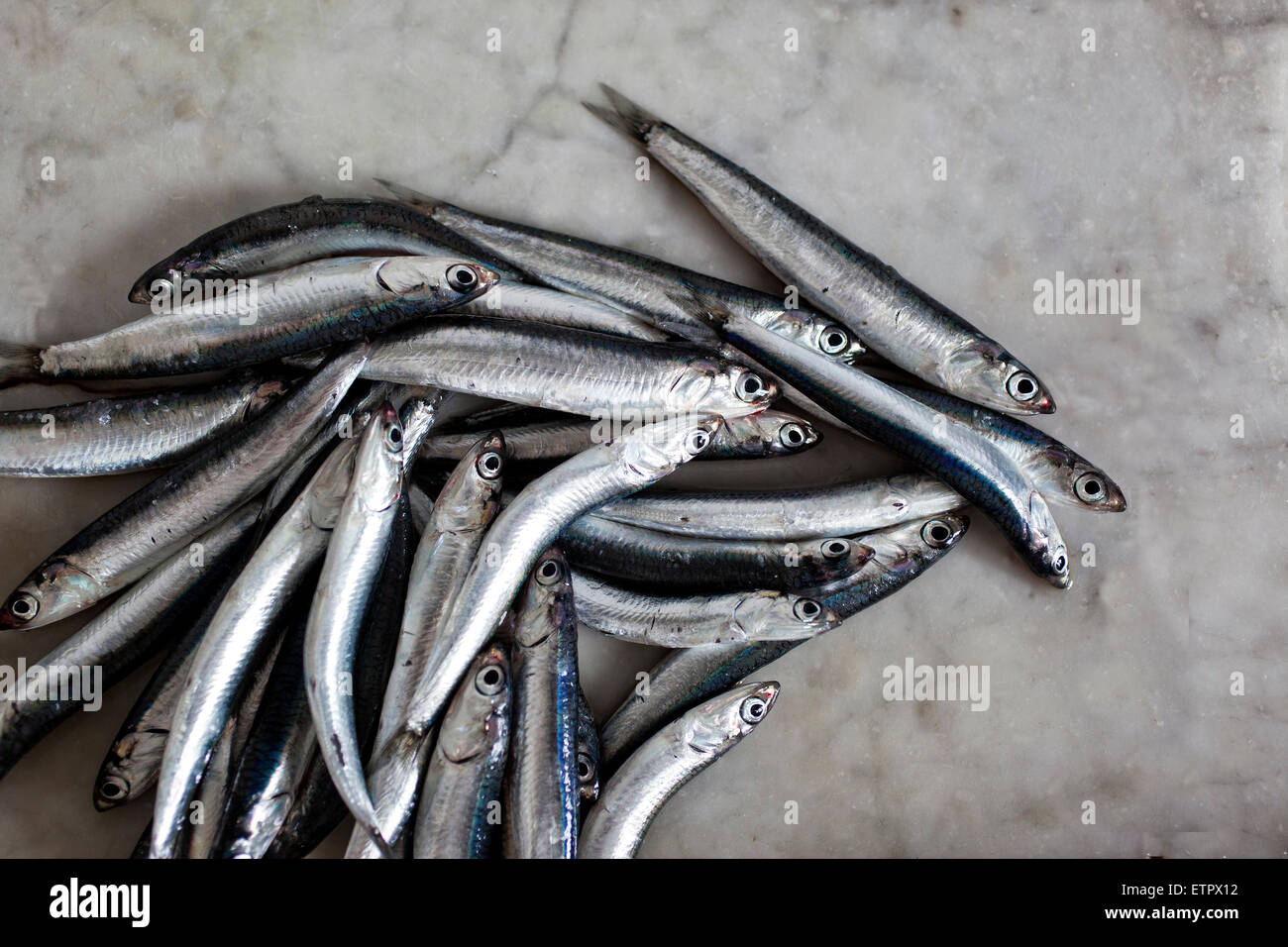 fresh anchovies on a marble top, backgroud of old marble - Stock Image