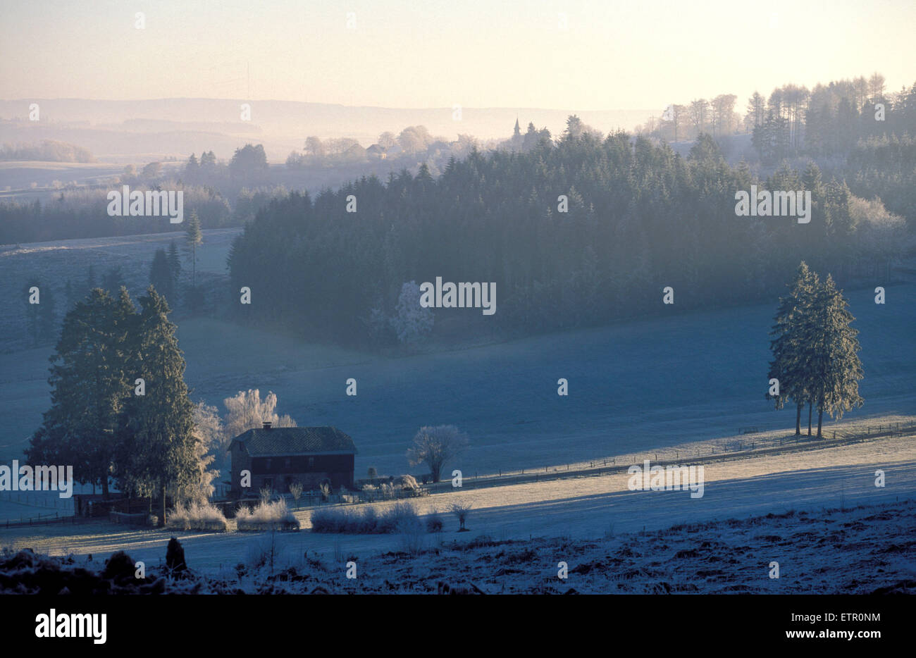 BEL, Belgium, Eastbelgium, winter landscape near Burg-Reuland, hoarfrost.  BEL, Belgien, Ostbelgien, Winterlandschaft Stock Photo