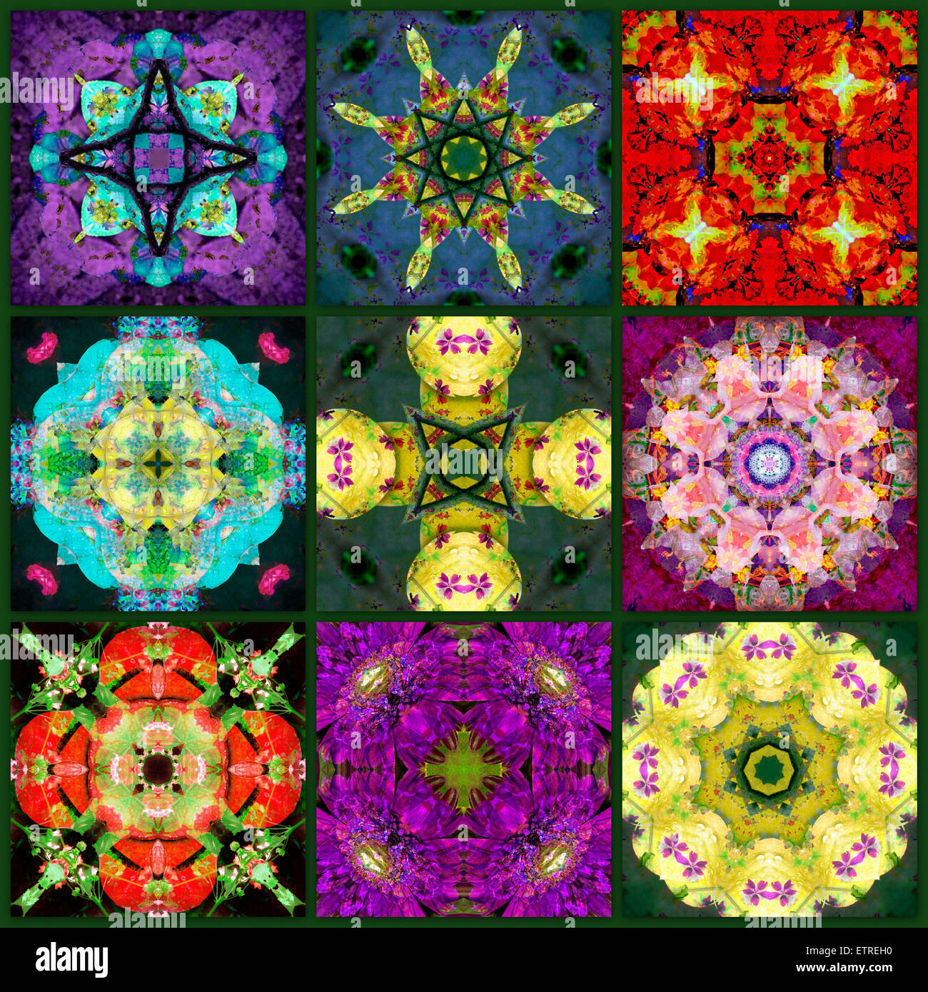 a mandala from flowers, - Stock Image
