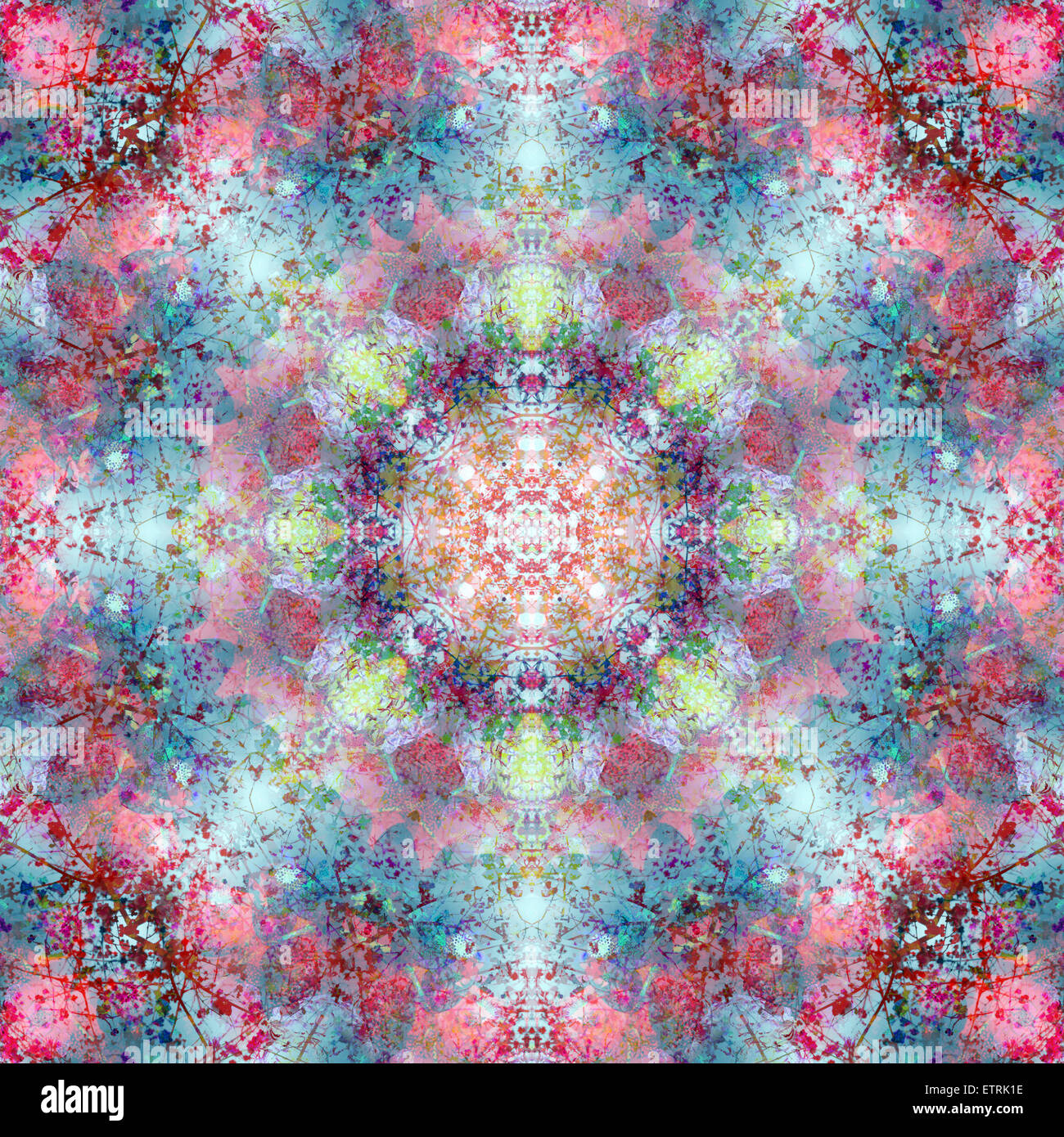 symmetric ornament from flower photographs Stock Photo