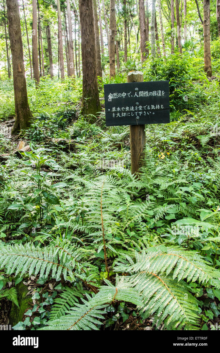Yatoyama Park, Zama city,Kanagawa Prefecture,Japan - Stock Image