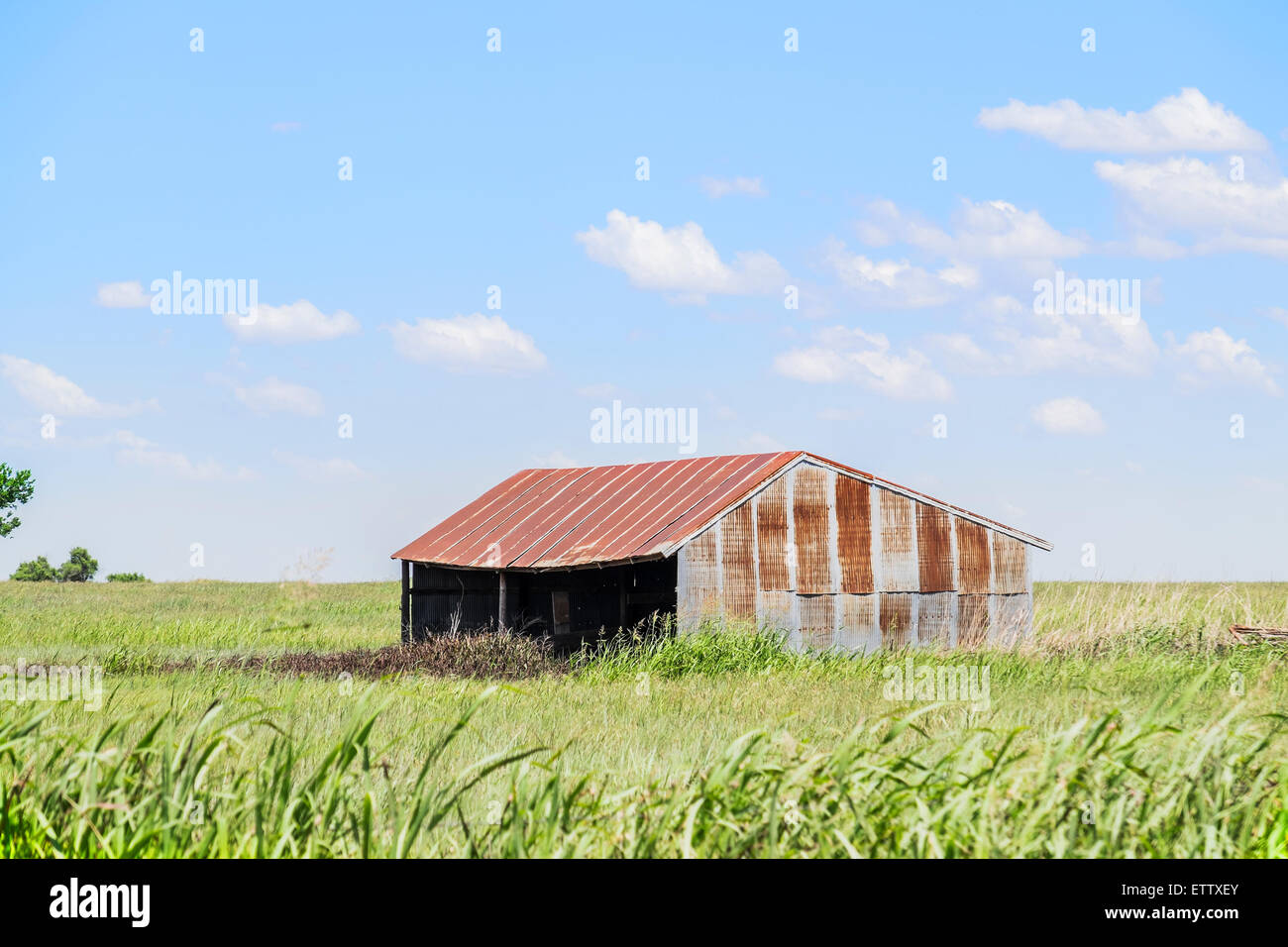 An old tin shed used for livestock or hay storage in rural Oklahoma. USA, U.S., U.S.A., United States - Stock Image