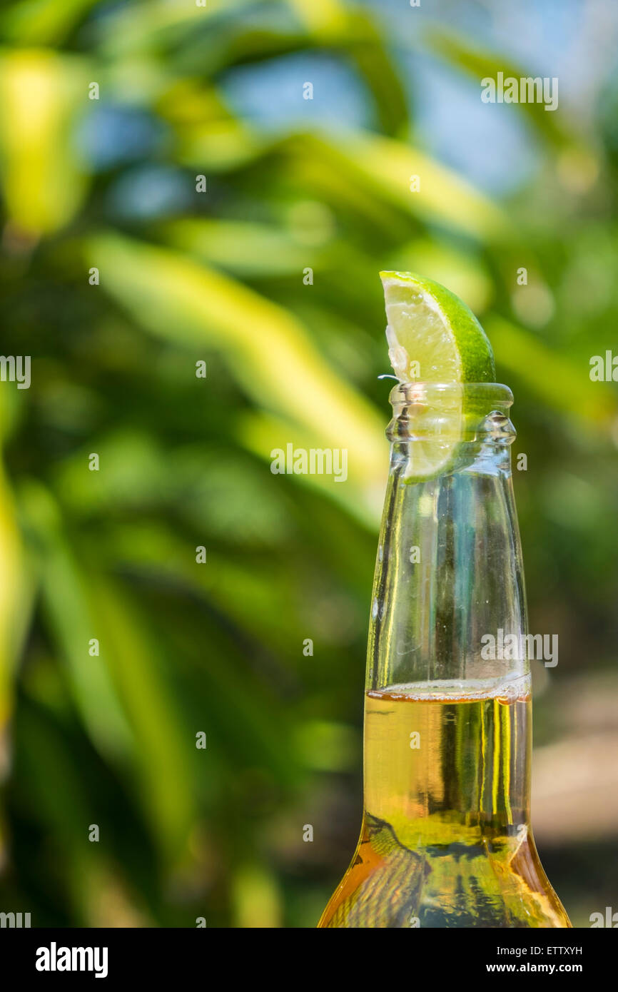 Beer bottleneck with lime - Stock Image
