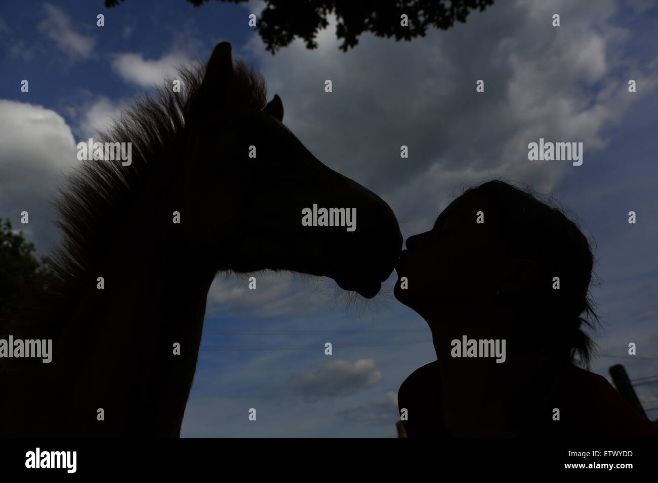 Werl, Germany, girl kisses a foal - Stock Image