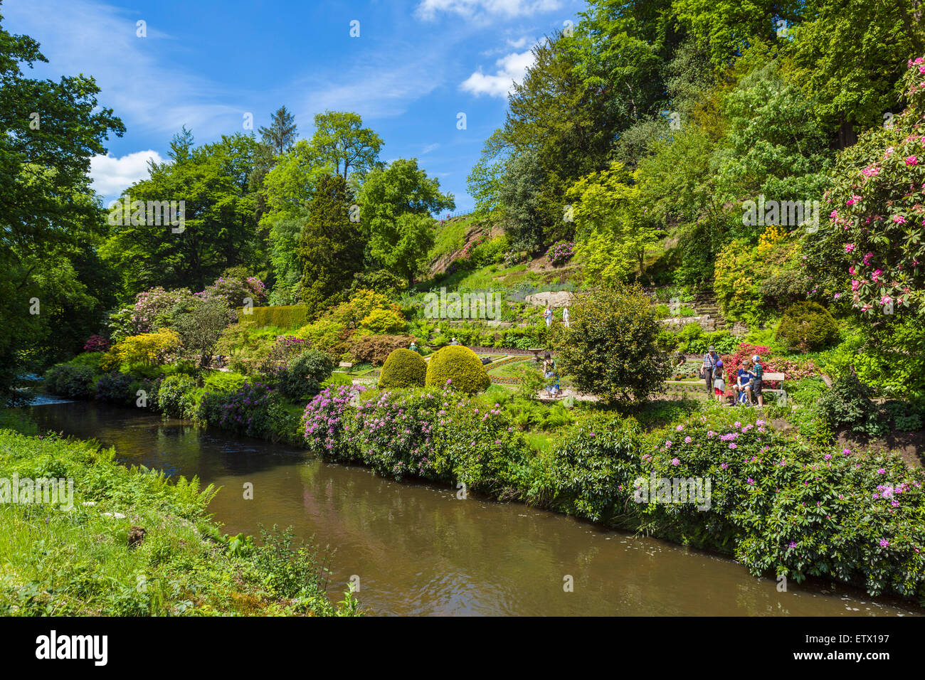 River Bollin in the Gardens at Quarry Bank Mill, a historic 18thC textile mill in Styal, Cheshire, England, UK - Stock Image