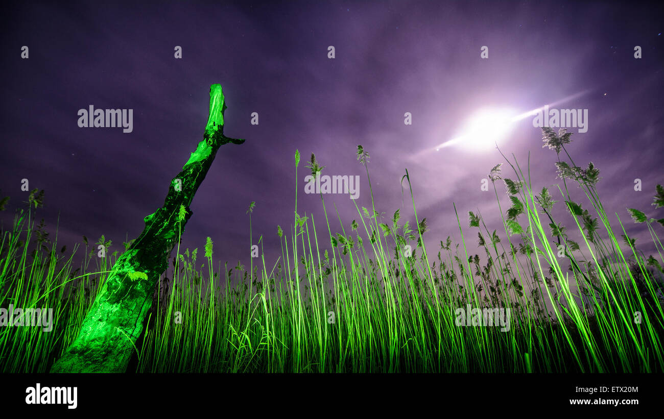 UfO ray of  the unusual moon - night full moon mystical landscape background - Stock Image