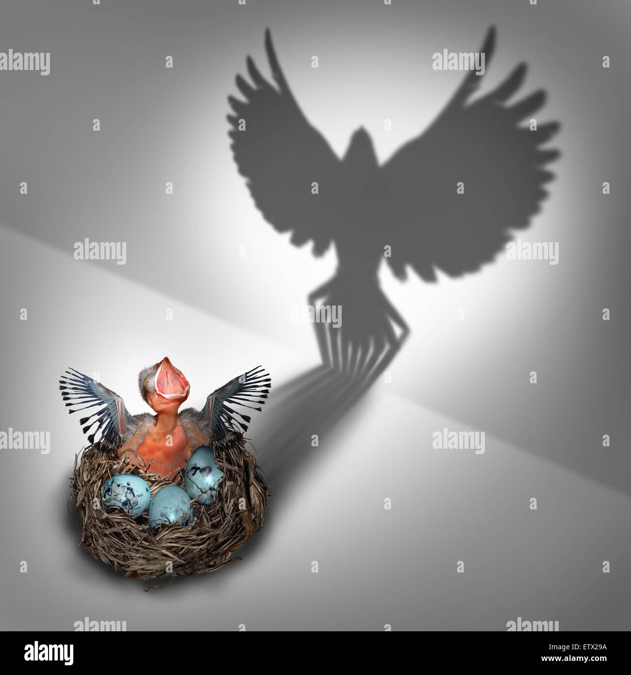 Future potential or genesis concept as a hatchling baby bird in a nest coming out with a cast shadow of a feathered - Stock Image