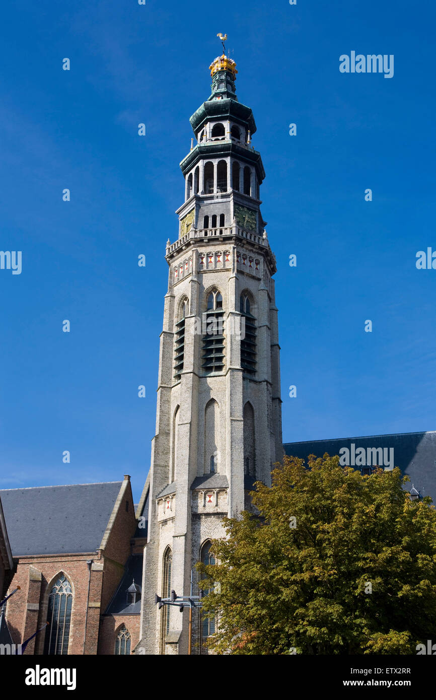 Europe, Netherlands, Zeeland, Middelburg on the peninsula Walcheren, steeple of the New Church of the abbey, Nieuwe - Stock Image