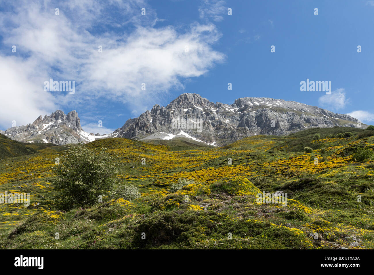 The Picos de Friero Mountains Viewed from the PR 15 Path Above the Village of Santa Marina de Valdeón Picos - Stock Image