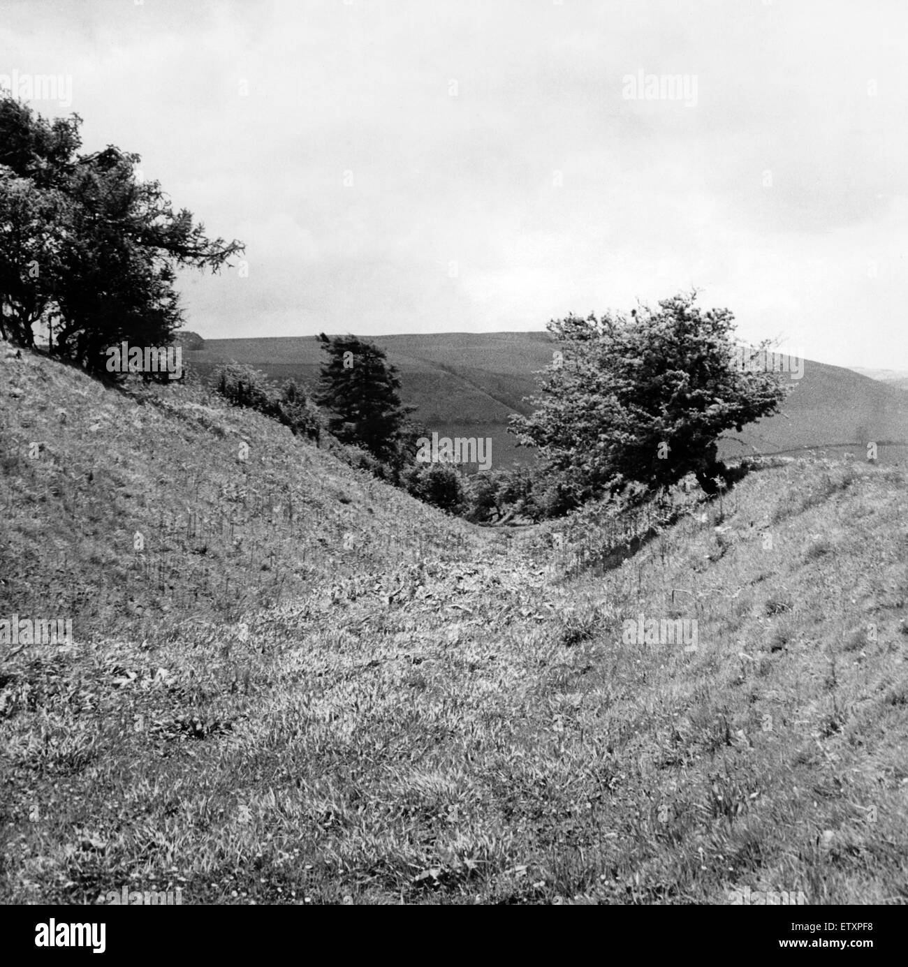 Offa's Dyke is a large linear earthwork that roughly follows the current border between England and Wales. Circa - Stock Image