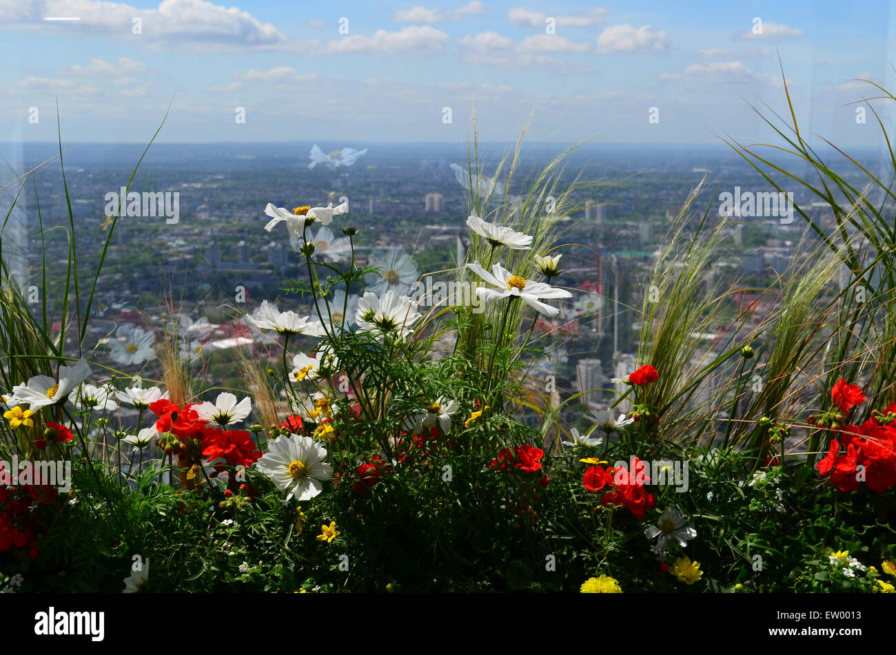 Window box in the sky over looking the City of London in the United Kingdom. - Stock Image