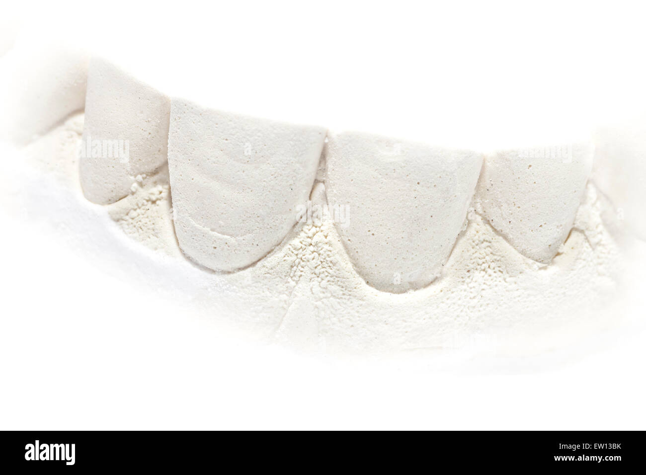 Tooth Shape Stock Photos & Tooth Shape Stock Images - Alamy