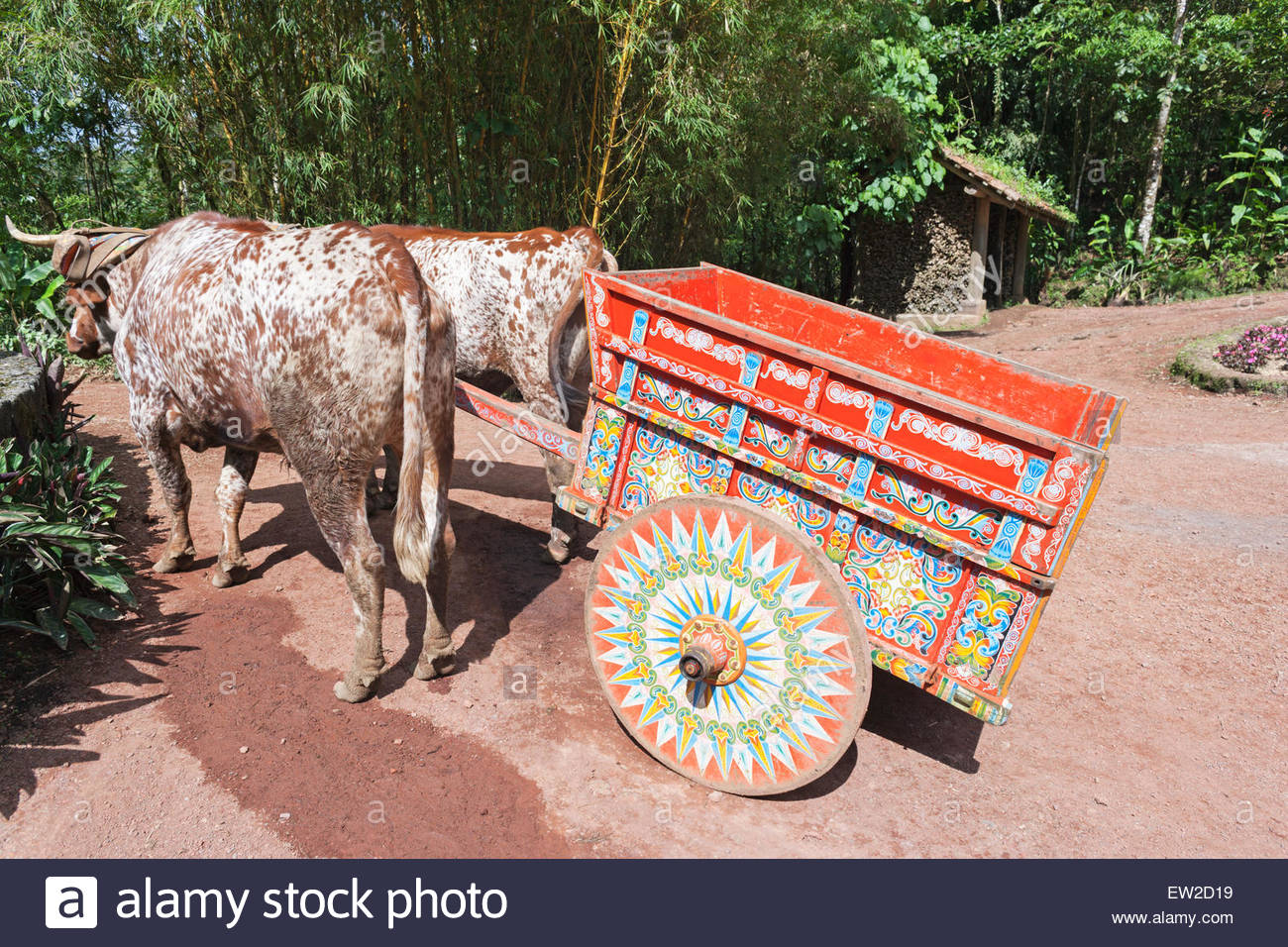 Decorative ox-cart, Costa Rica, Central America - Stock Image