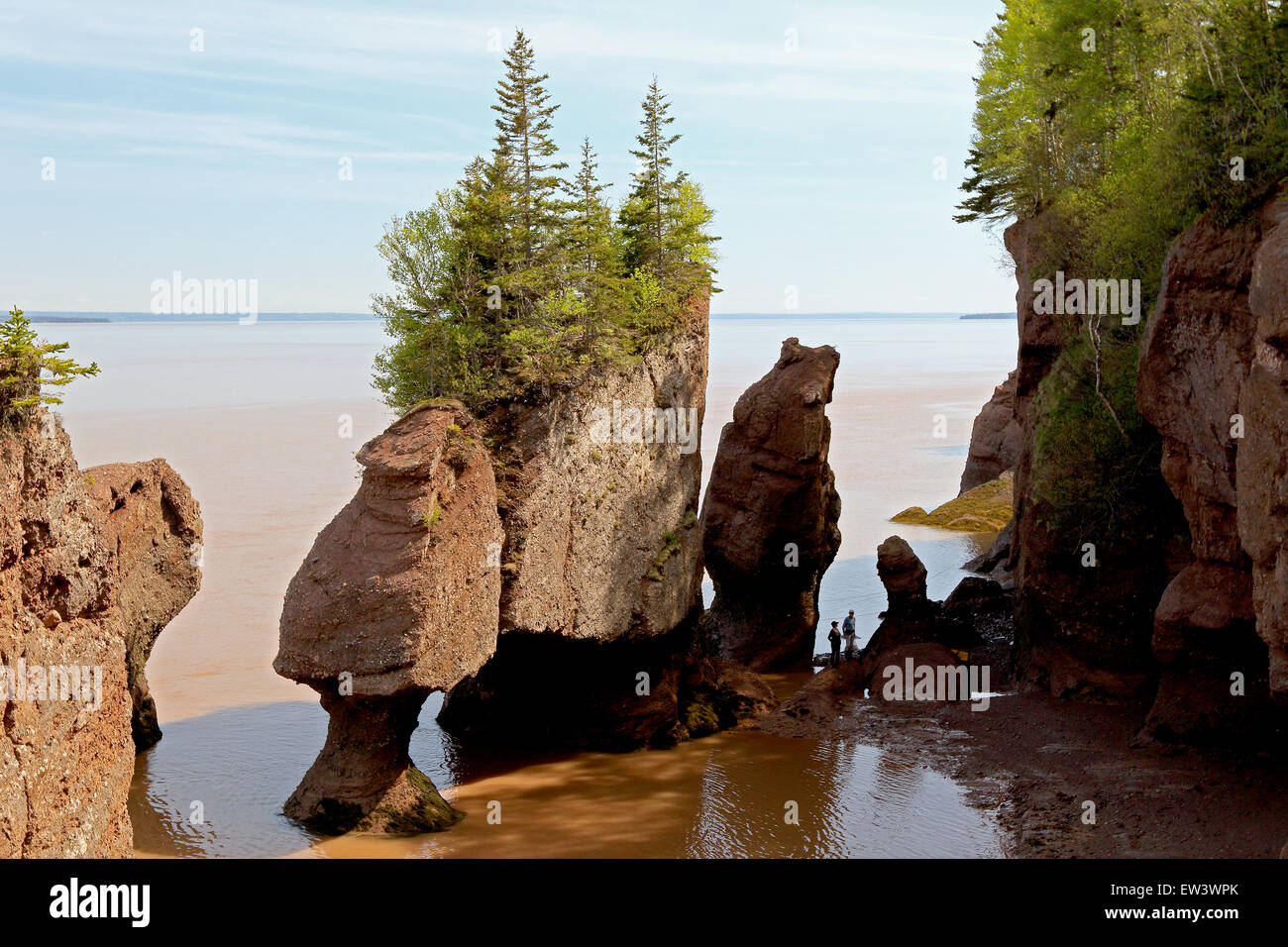 Bay of Fundy, New Brunswick, Canada Hopewell Rocks beach at low tide with tourists walking beach. - Stock Image