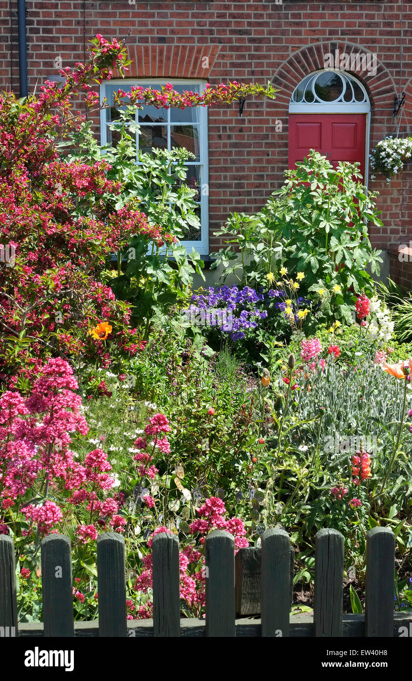 front garden of small terraced house Stock Photo