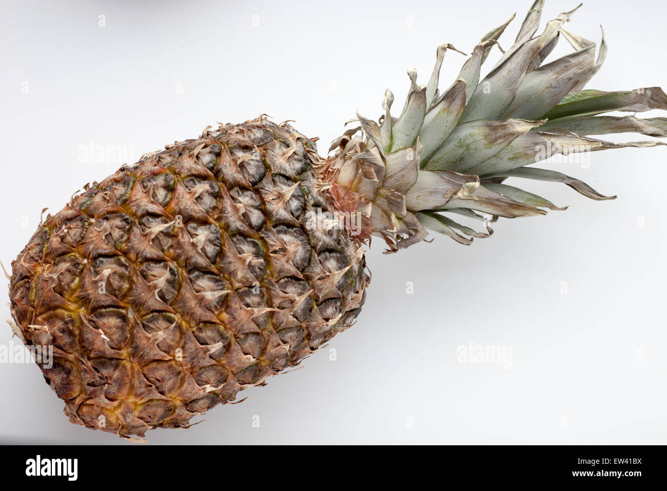 Ripe juicy pineapple on a white background - Stock Image