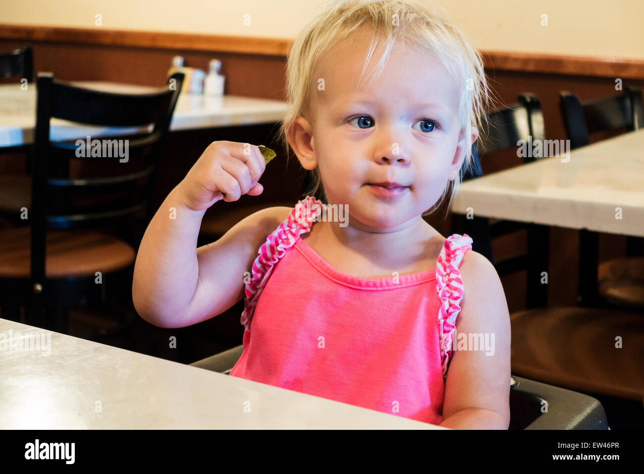 An 18 month old blonde Caucasian baby girl enjoys a sour pickle at a restaurant. USA. - Stock Image