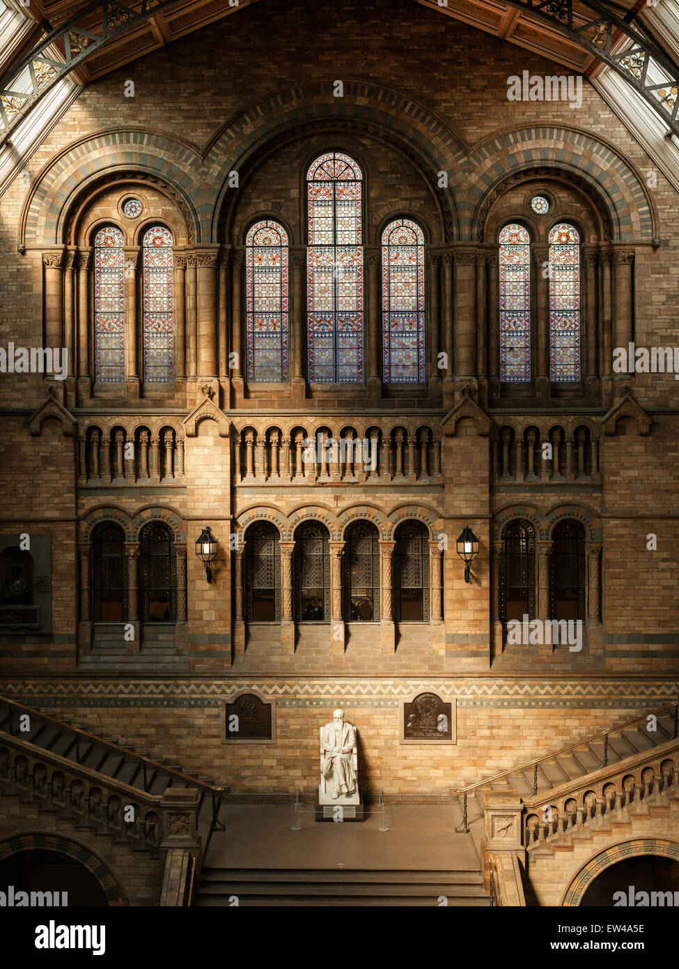 Statue of Darwin in the Natural History Museum, London, England. - Stock Image