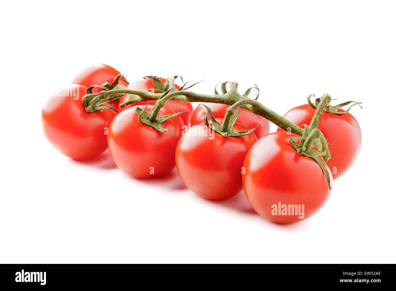 Vine Tomatoes - Stock Image