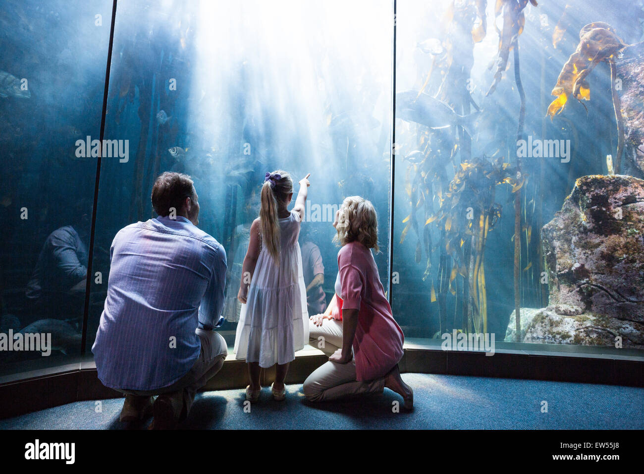 Daughter pointing a fish while her mother and father looking at fish tank - Stock Image