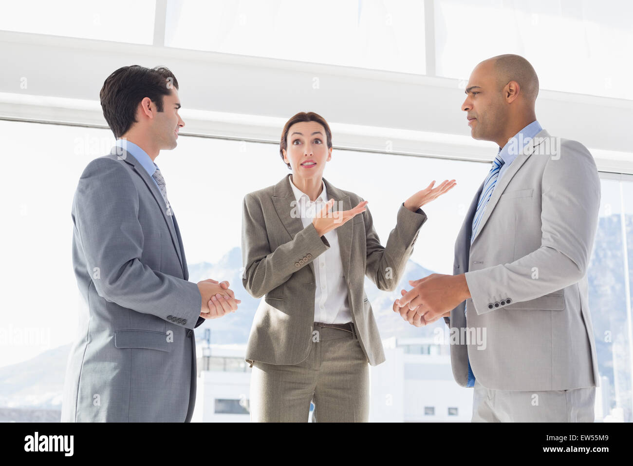Business colleagues having a disagreement - Stock Image
