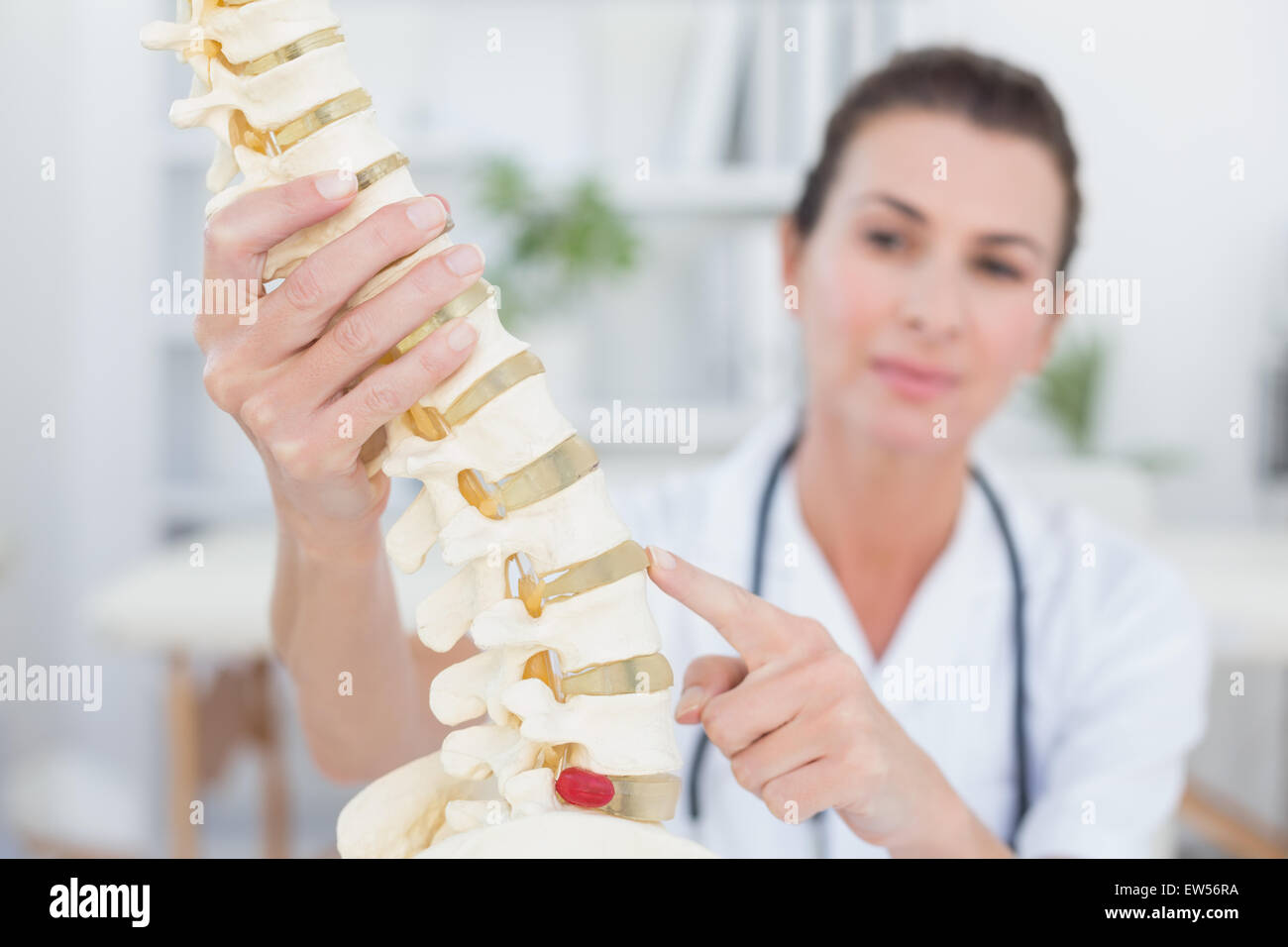 Doctor showing anatomical spine - Stock Image