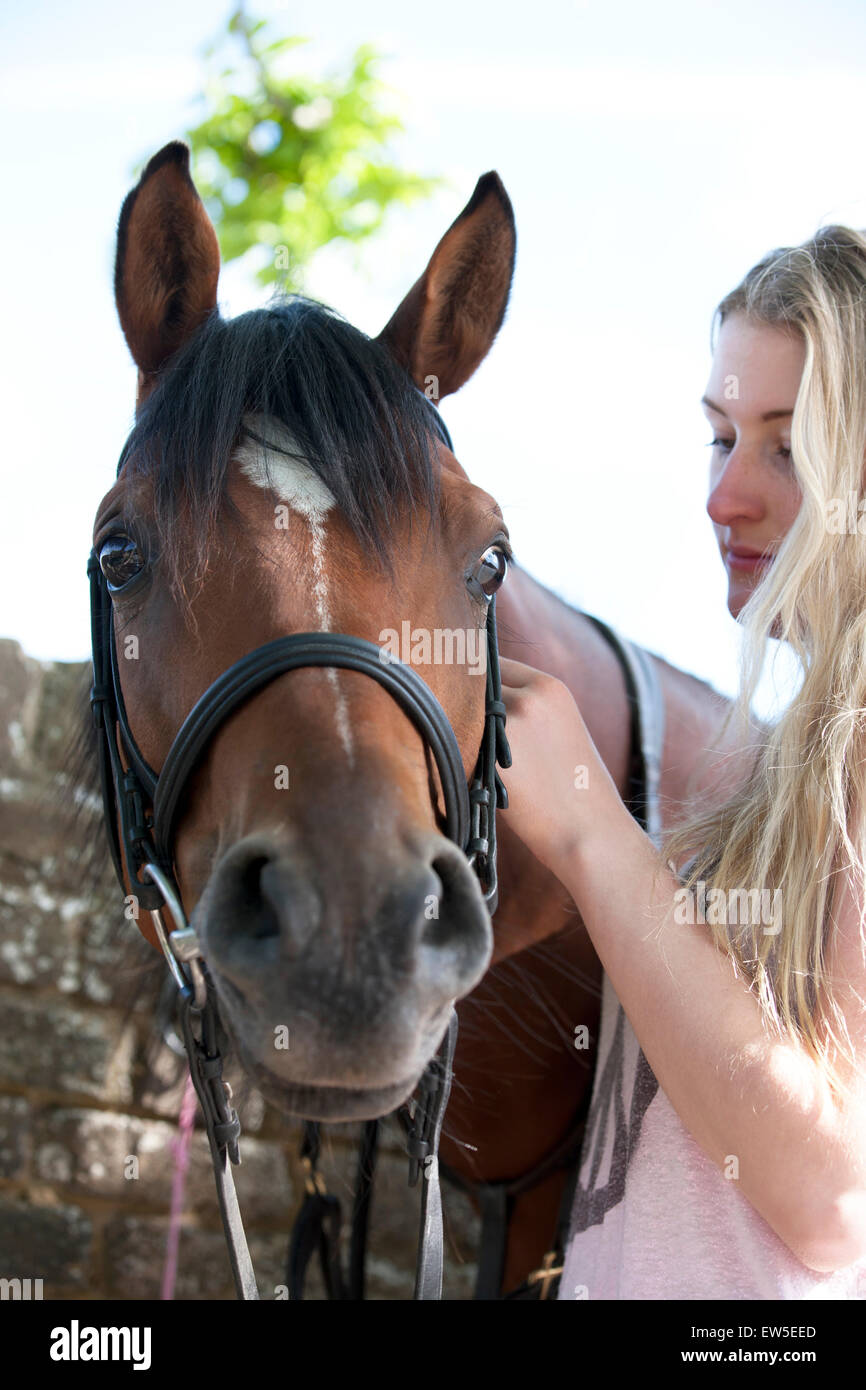 A young woman putting a bridle on a horse Stock Photo
