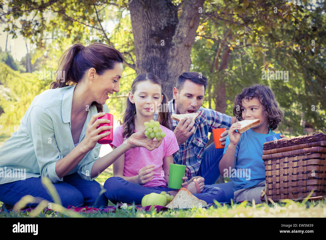 Happy family having a picnic in the park - Stock Image