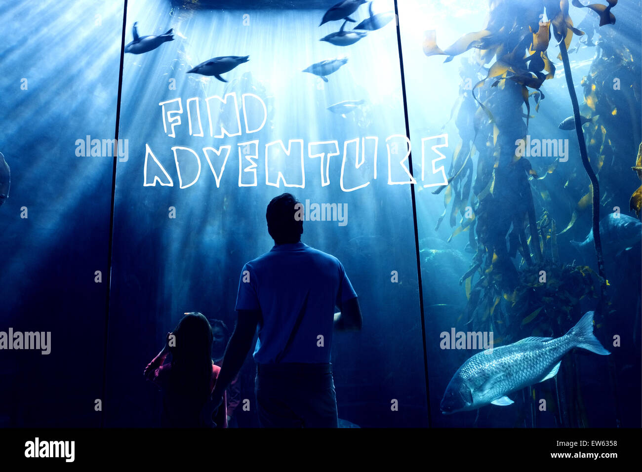 Composite image of find adventure - Stock Image