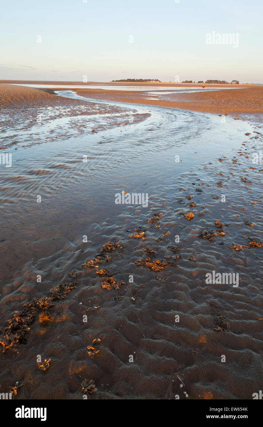 Wells-next-the-Sea beach, Norfolk, England UK, as the sun is setting and the tide is out - Stock Image
