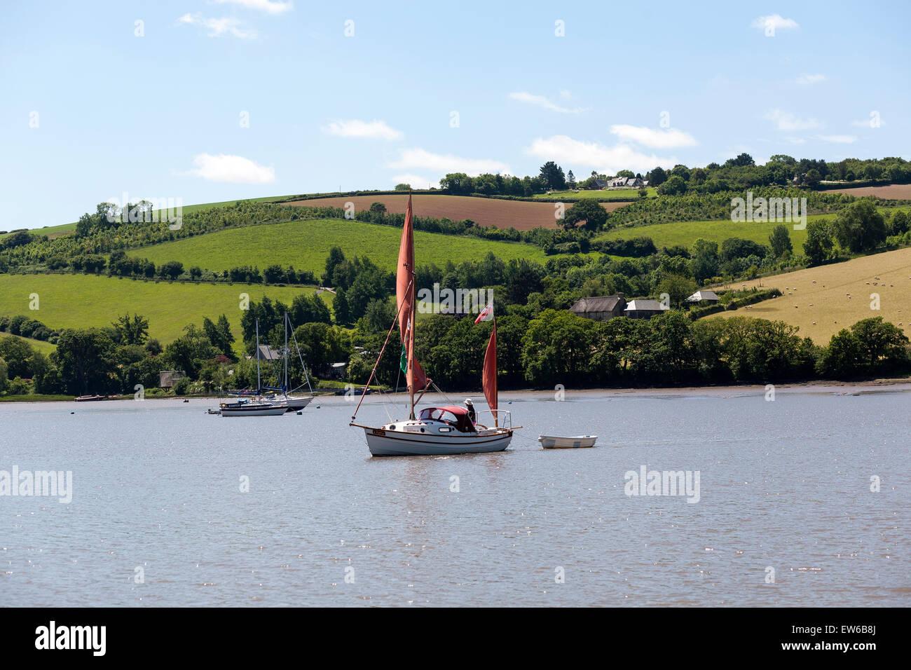 red sailed drifter boat on river dart,stoke gabriel,mill pond,devon, dittisham, uk, river, waterfront, summer, ditsum, - Stock Image