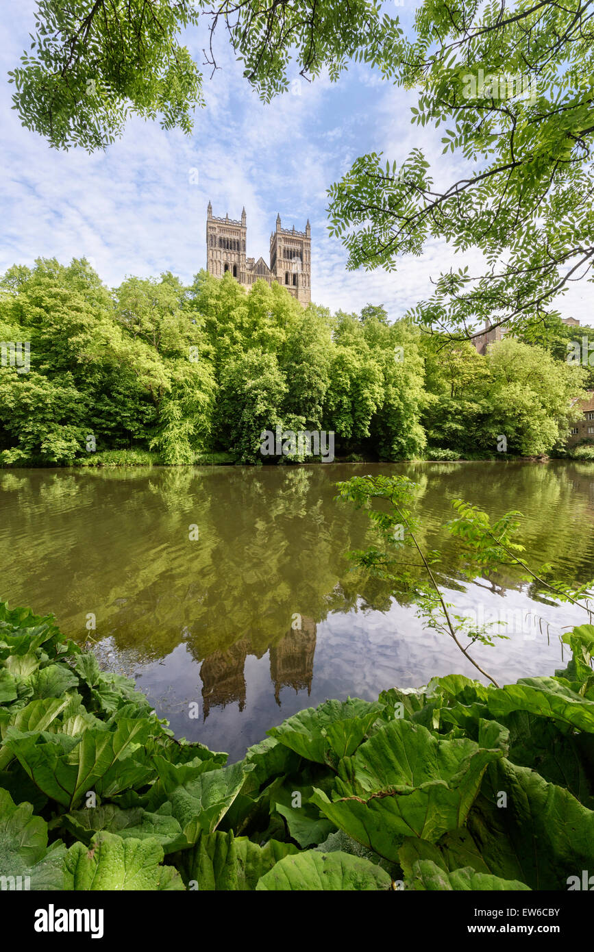 River Wear, Durham Cathedral - Stock Image