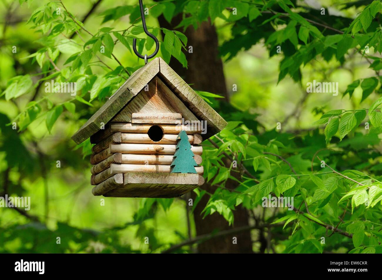 'The Seedy Motel' log cabin bird house. - Stock Image