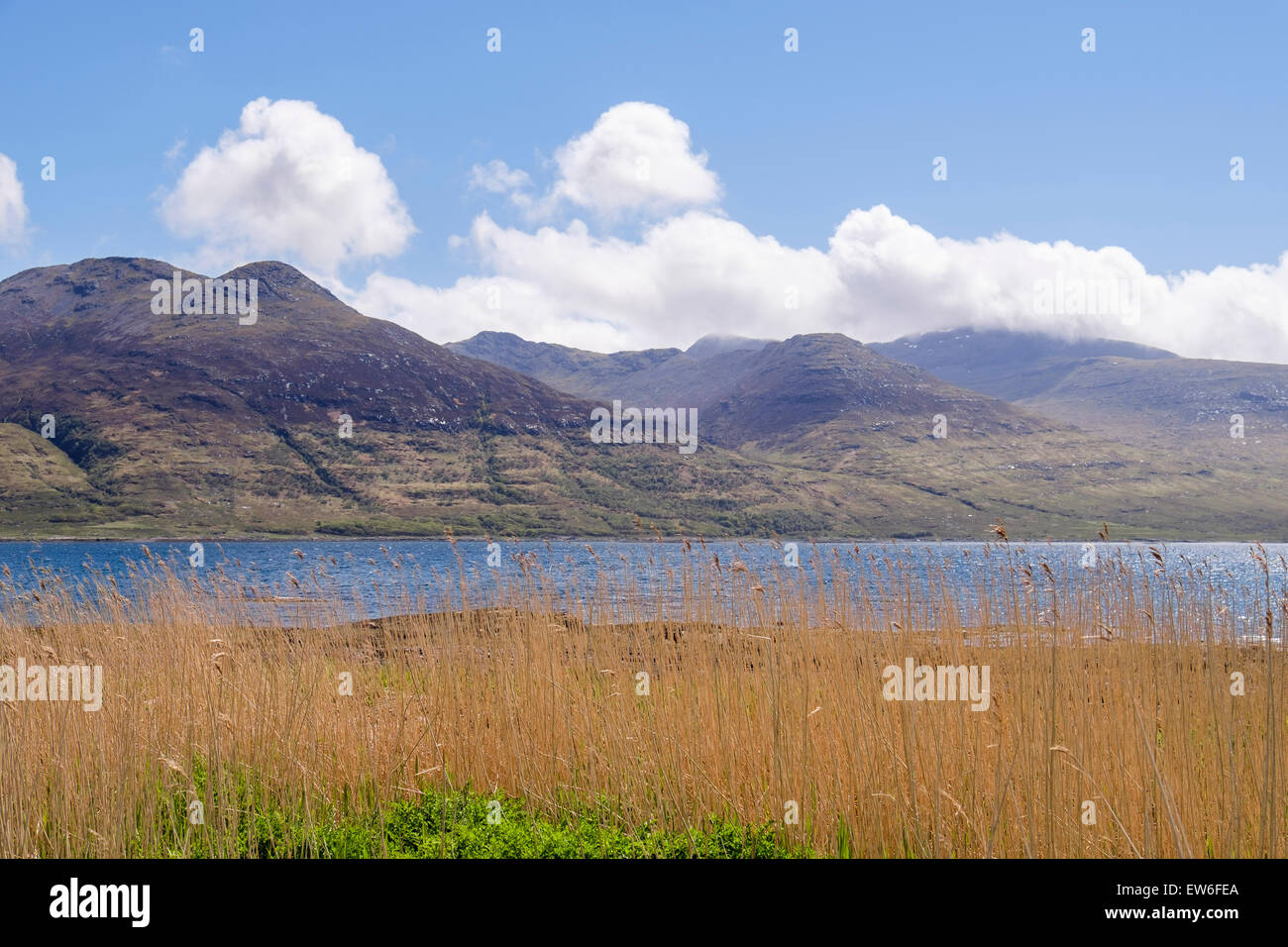View south across Loch na Keal to cloud covered Ben More mountain. Isle of Mull Inner Hebrides Western Isles Scotland Stock Photo