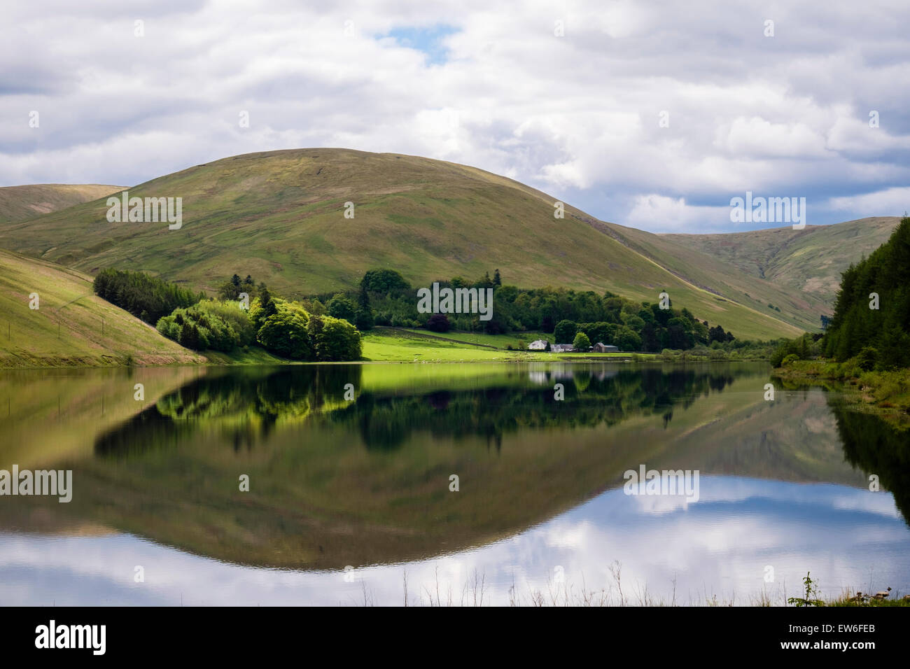 Hills reflected in tranquil waters of Loch of the Lowes in Yarrow Valley at St Mary's Loch in Southern Uplands. - Stock Image