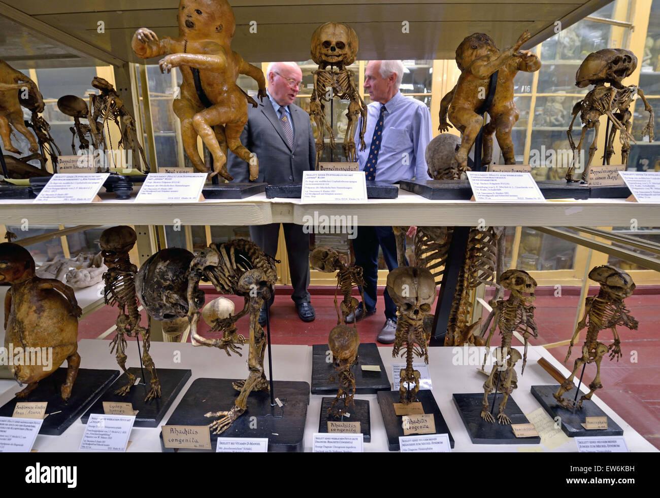 Anatomy professor Ruediger Schultka (L) and Bernd Fischer, director ...