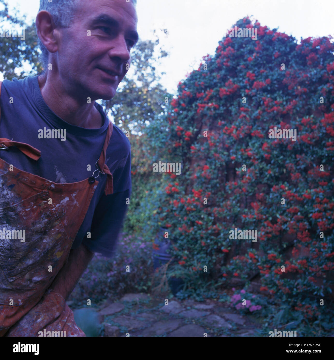 Close-up of a gardener in a country garden - Stock Image
