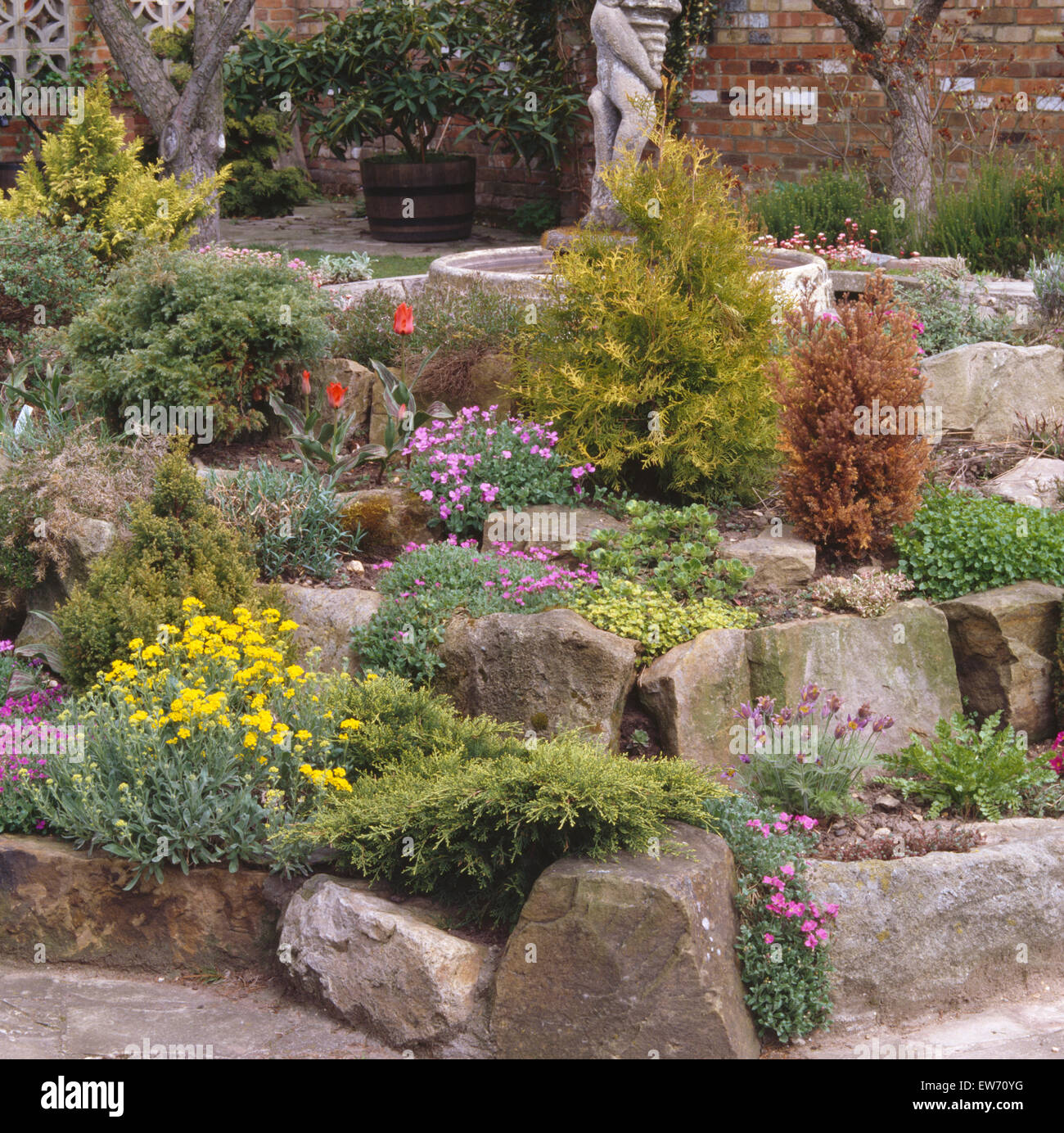 Low conifers and colorful alpines in seventies rockery garden - Stock Image