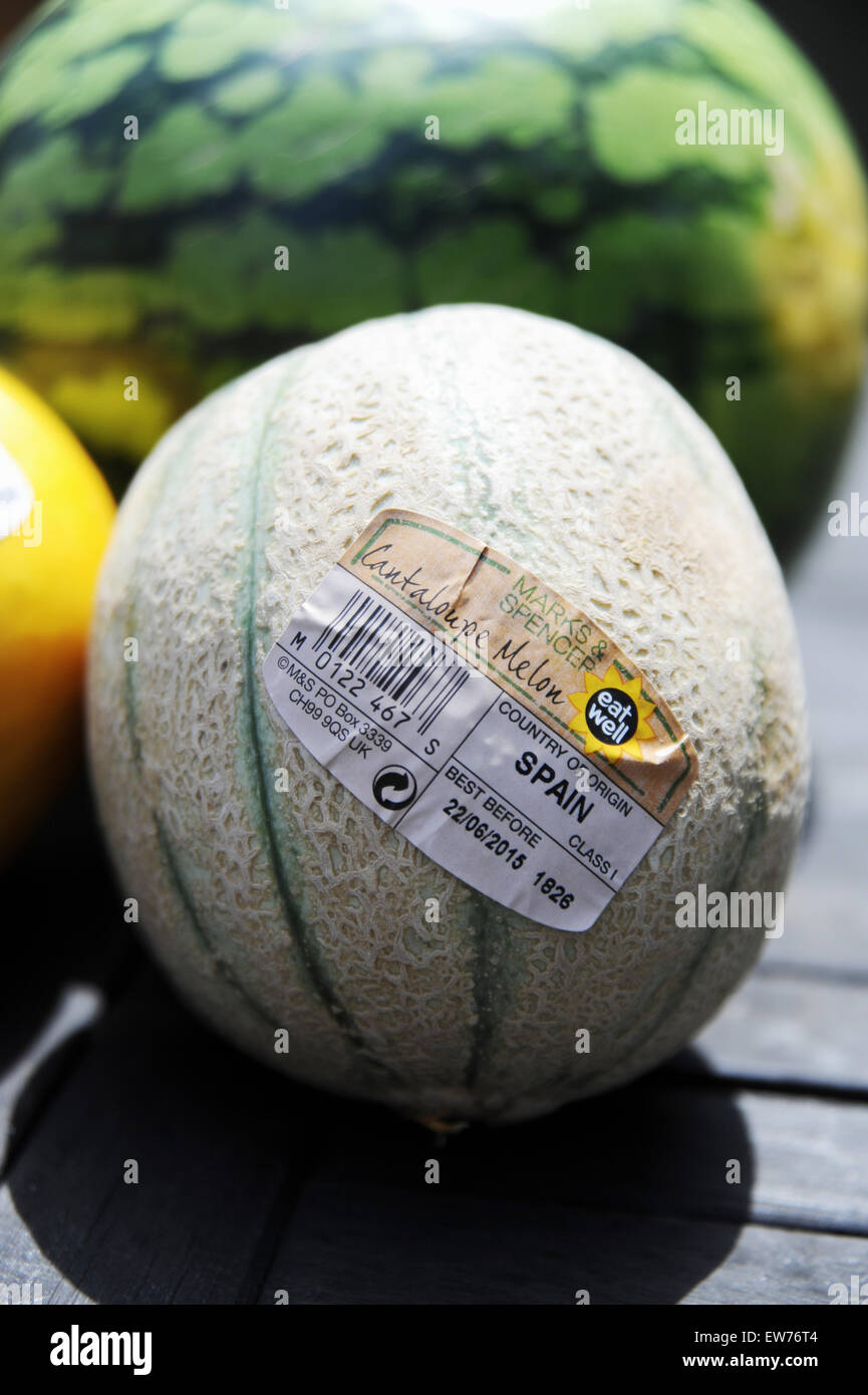 A Cantaloupe Melon Grown In Spain And Sold By Marks Spencer Stock Photo Alamy Cantaloupe, a variety of musk melon, is. alamy