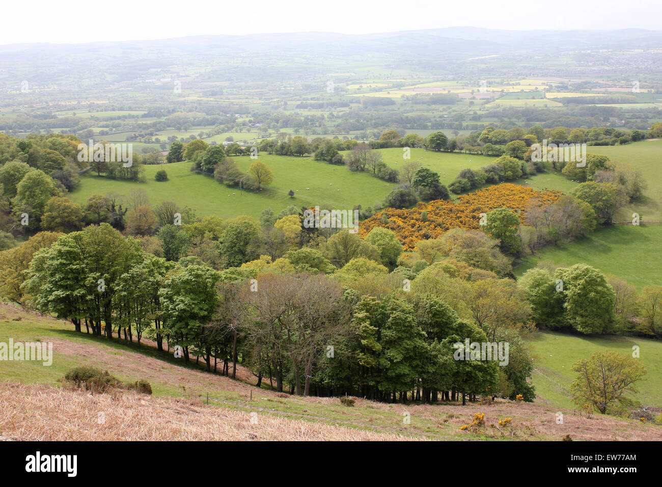 Vale Of Clwyd From The Clywdian Range, Denbighshire, Wales - Stock Image