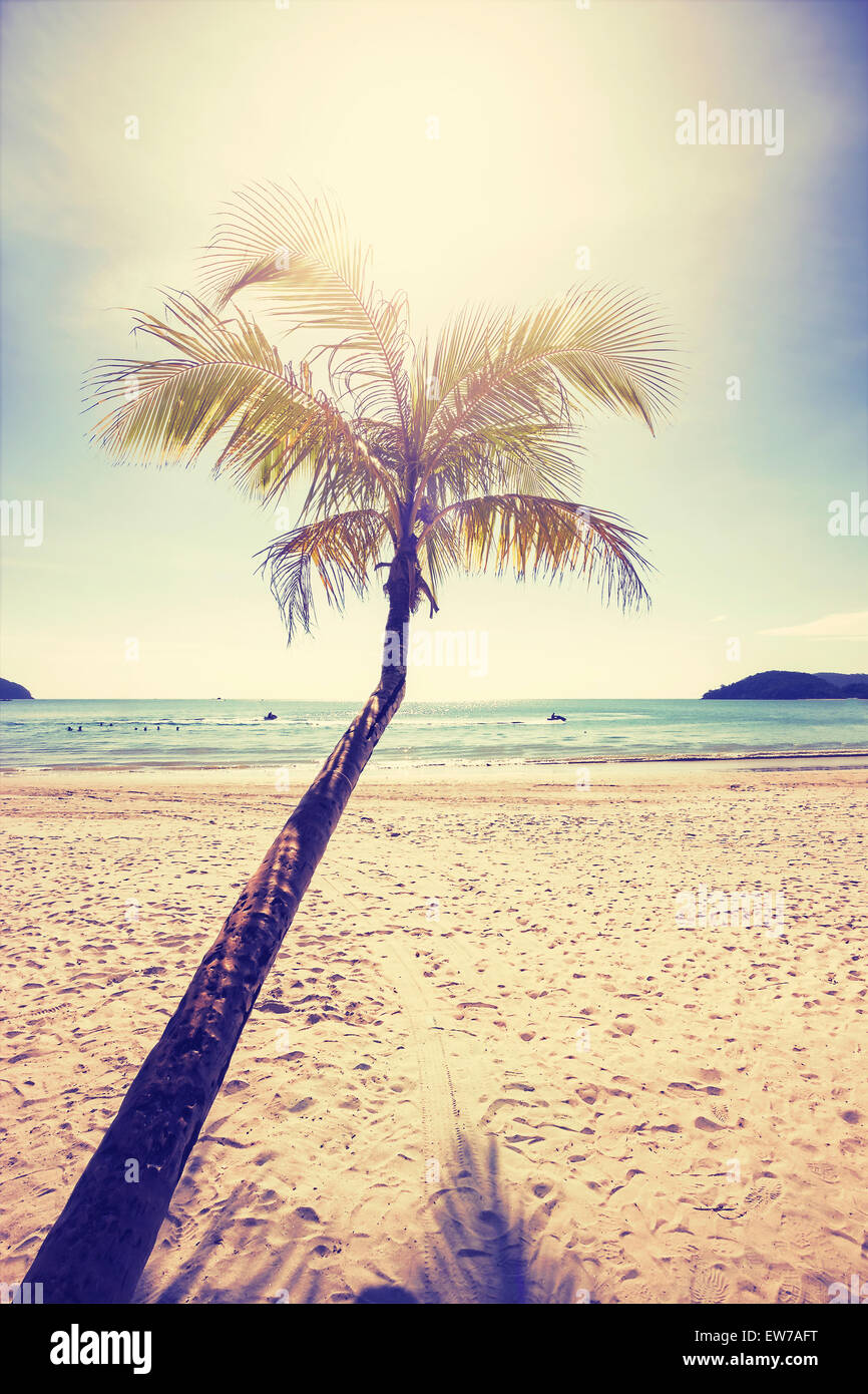 Vintage stylized tropical beach with palm tree at sunset. - Stock Image