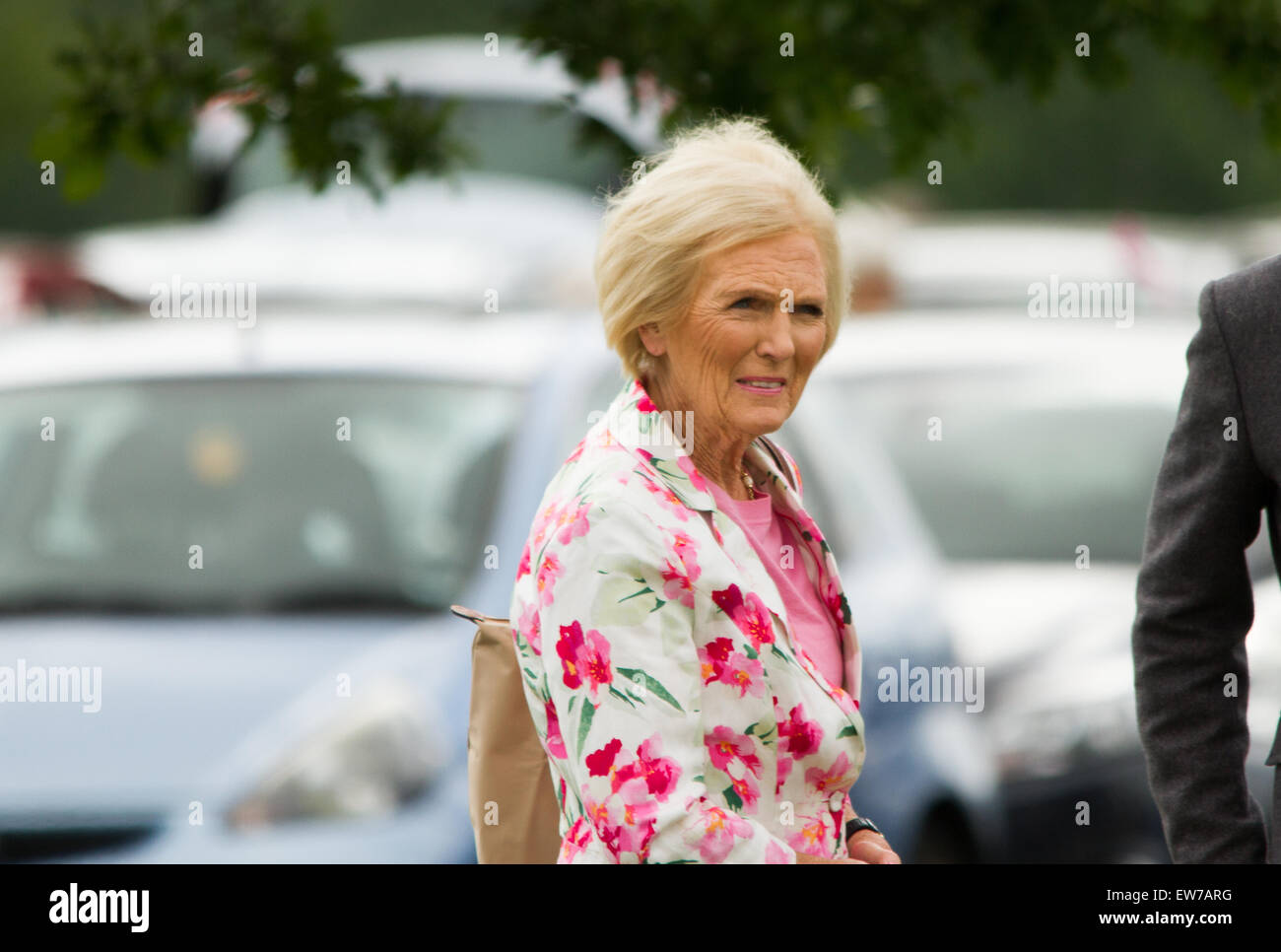 Oxford, UK. 19th June, 2015. Mary Berry Opens the Blenheim palace flower show Pete Lusabia/Alamy Live show Credit: - Stock Image
