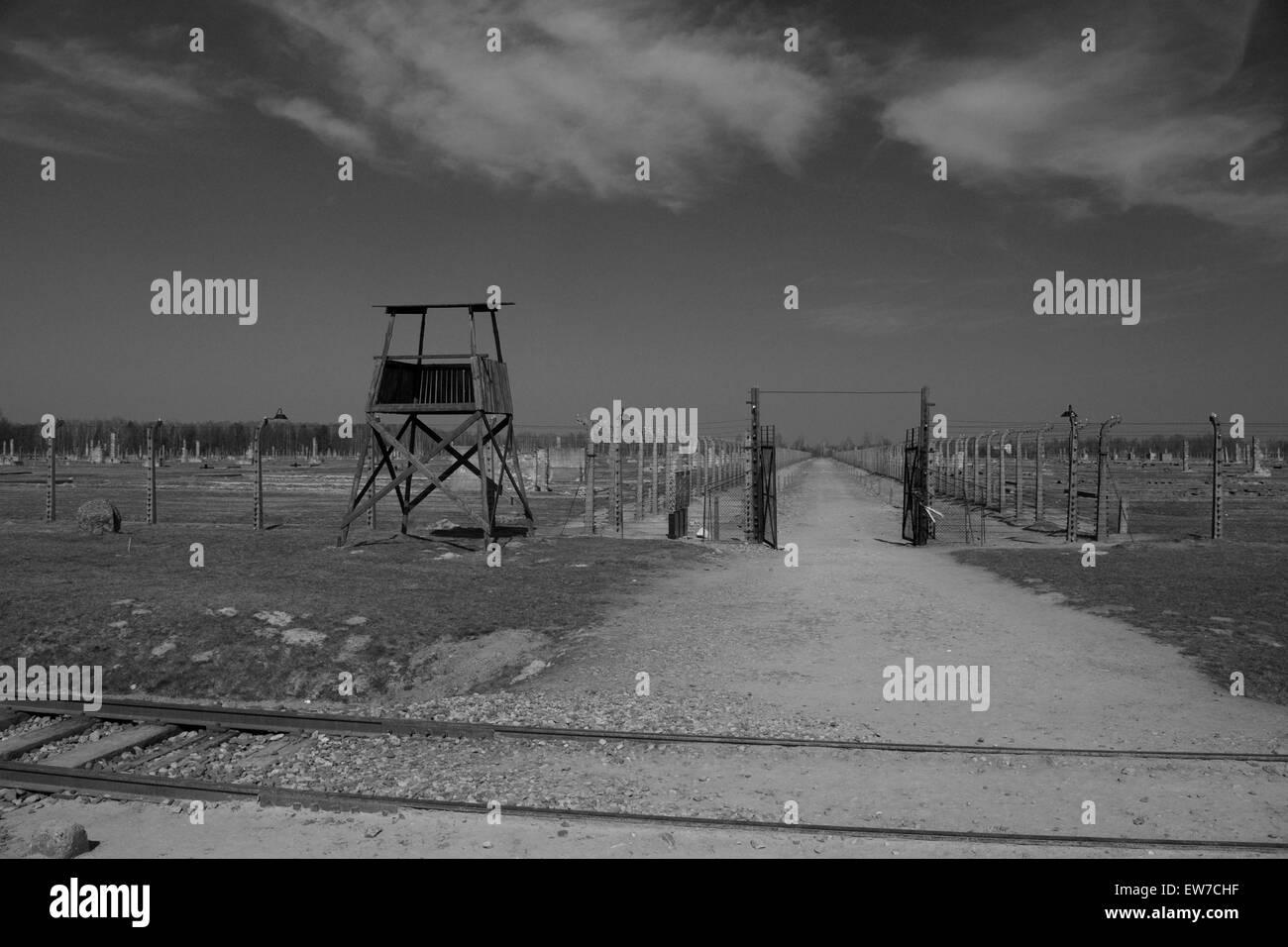 Auschwitz Birkenhau AtrocitiesStock Photo